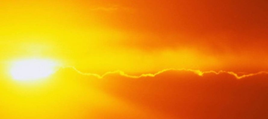Caldo record dal 7 al 23 agosto, è attivo il numero verde per le emergenze