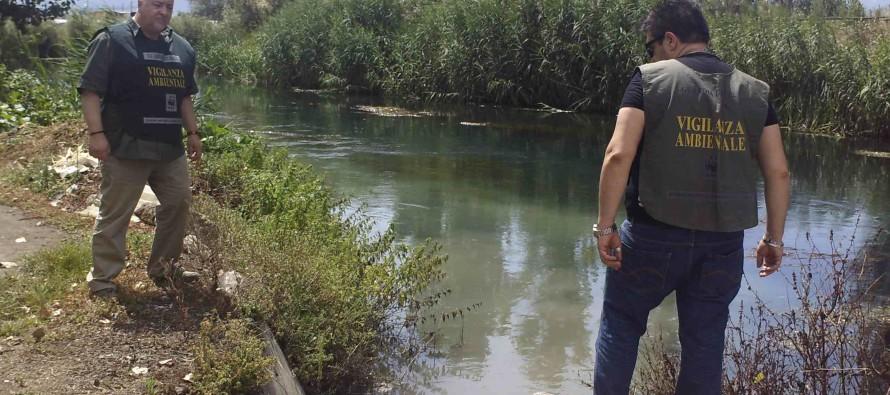 Scarichi inquinanti nel Fiume Sarno, intervento provvidenziale del WWF e dell'Ente Parco. Scattano le denunce