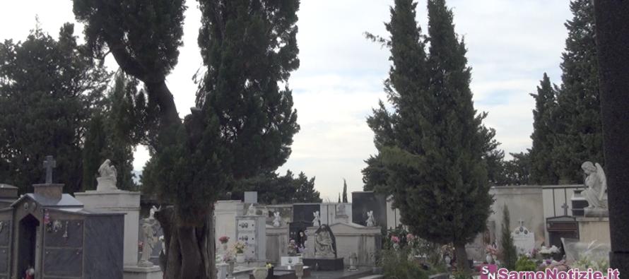 VIDEO | Tempesta di vento, problema sicurezza al cimitero