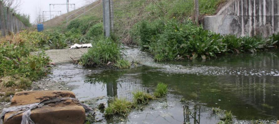 Tutela ambiente -Tonnellate di liquami inquinanti: intervento dell'Ente Parco