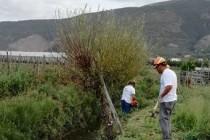 Fiume Sarno, lavori sugli argini per scongiurare straripamenti