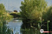 Archeologia ed Ambiente: confronto a Sarno – Le interviste