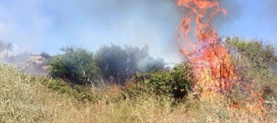 Incendia sterpaglie e rifiuti agricoli, contadino multato