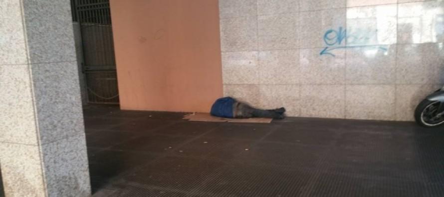 Dormiva in un cartone. Soccorsa e curata