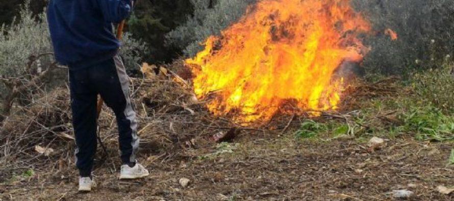 Brucia sterpaglie e rifiuti, picchiato dal vicino