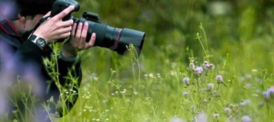 """""""Caccia…all'immagine"""": concorso fotografico e la natura protagonista. Ecco come partecipare"""
