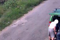 Rifiuti al Parco del Vesuvio: 75enne beccato e denunciato
