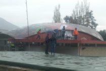 """Operai sul tetto: """"Aiutateci"""". Protesta estrema a Sarno"""