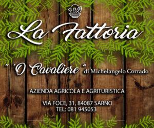 Banner la fattoria SarnoNotizie